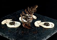 Cèpes en croque sel, caviar Sturia Vintage