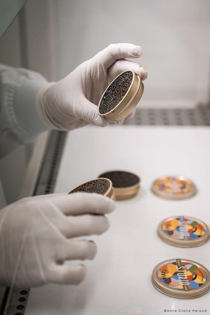 L'affinage du caviar © Anne-Claire Heraud L'expertise d'affineur de la maison Sturia : Primeur (1 mois), Vintage (3 à 6 mois), Origin (+ 8 mois)