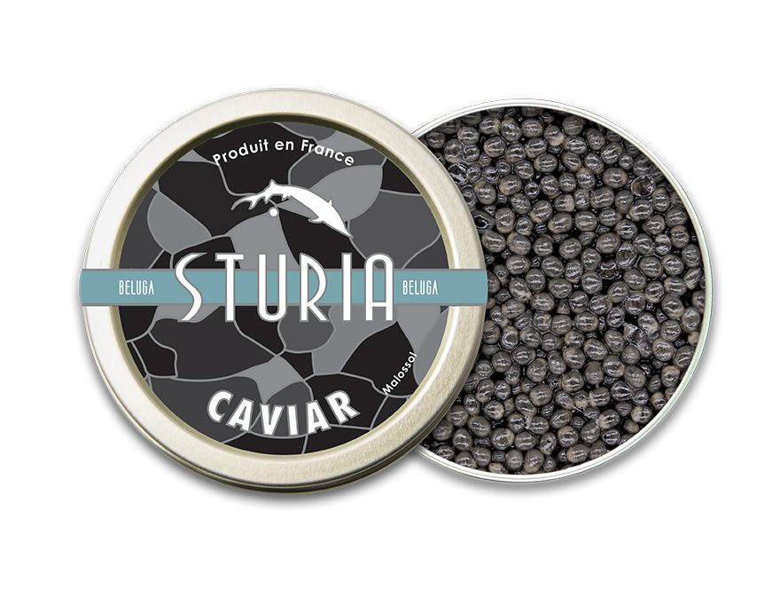 Caviar Sturia Beluga - français